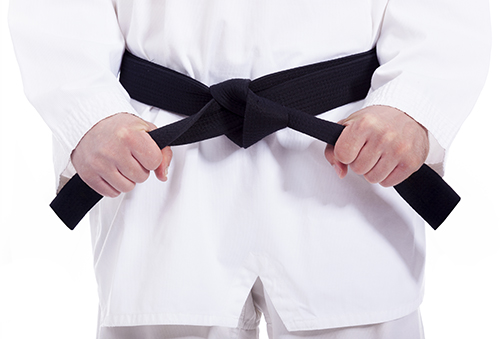 Courses for Sale - SKKA - Learn the Martial Arts from home